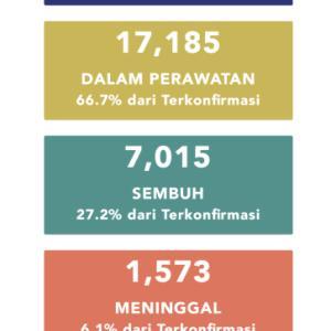 5月30日(土)の集計 インドネシア政府発表より
