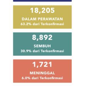 6月4日(木)の集計 インドネシア政府発表より