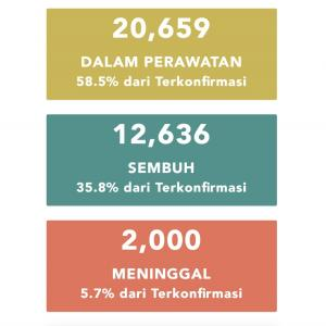 6月11日(木)の集計 インドネシア政府発表より