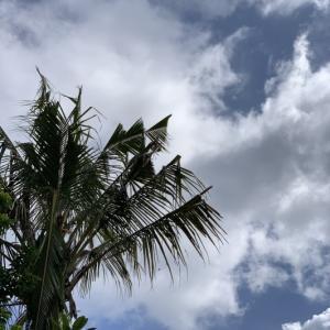 雲が多いですが今日の空