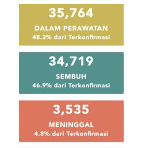 7月11日(土)の集計 インドネシア政府発表より