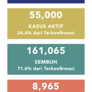 9月15日(火)の集計 インドネシア政府発表より