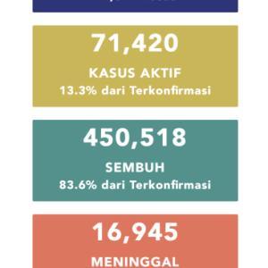 11月30日(月)の集計 インドネシア政府発表より