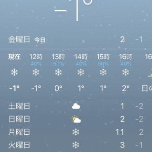 雪!雪!!雪!!!