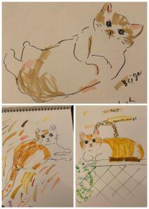 猫の絵練習など と、まだまだテラハ鑑賞