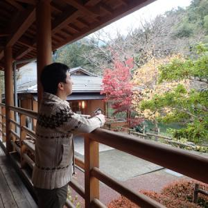 内子町小田の郷せせらぎの紅葉と小田深山渓谷