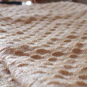 手織り手紡ぎ工房より・桃山織りその3 房より中に見た景色