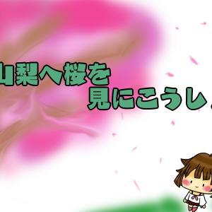 山梨の一度は見てほしい桜スポットまとめ!【最新版】