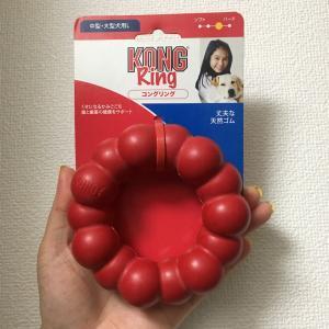 KONGのドーナツ型のゴムのおもちゃ