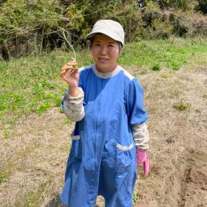 初めてニラを植えてみた!