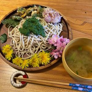 【報告】春の身近な薬草・野草お料理ワークショップ