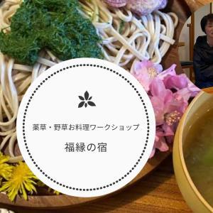 【募集】福縁の宿の身近な薬草・野草料理ワークショップ