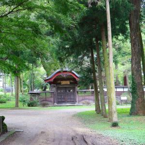 最大山春日院雙林寺1