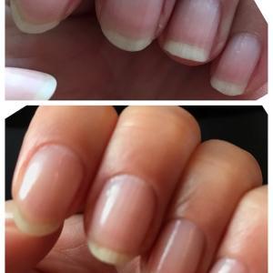 爪育て開始から7週間