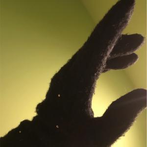 手袋なるべくしています。