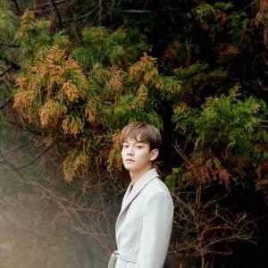EXOチェン、EXO-Lに謝罪のメッセージ…結婚と妊娠のニュースから約1ヶ月