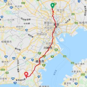 鎌倉から下田往復の300kmブルベに参加してきました。