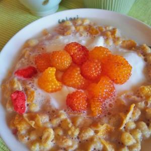 カジイチゴをトッピングしてヨーグルトグラノラの朝食