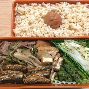 今日の健康弁当《豆苗と牛肉炒め》190410