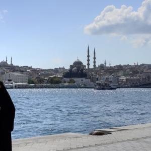 5)トルコ旅行3日目 フェリーでアジアへ HD PENTAX-D FA★ 50mmF1.4 SDM AW
