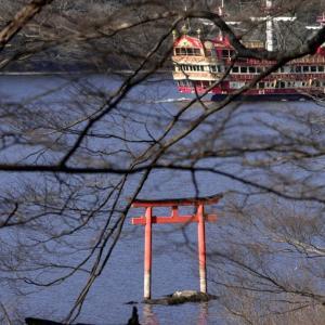 箱根神社と九頭龍神社への散策 HD PENTAX-D FA★ 70-200mmF2.8ED DC AW