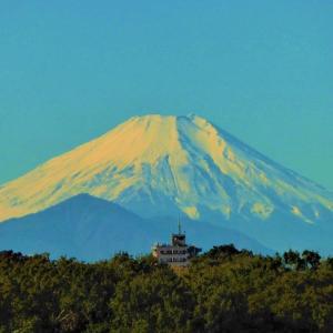 朝夕の富士と丸い月