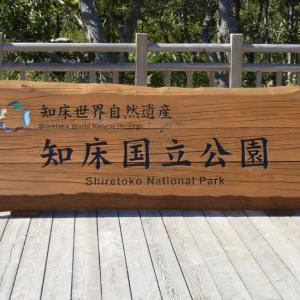 北海道の旅(100) 知床五湖  知床国立公園