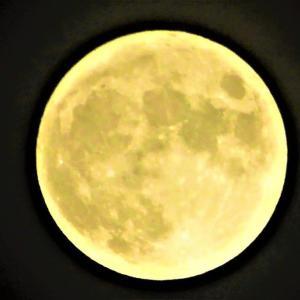 今日の満月