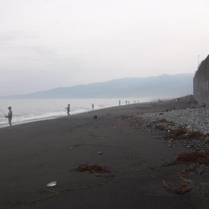 2019/8/3 カマス×2、ワカシ×2@酒匂海岸