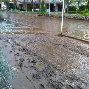 一夜明けて水が引いた武蔵小杉、道路を「茶色いなにか」が埋め尽くす(画像あり)