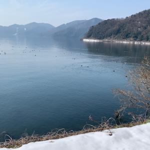 冬の琵琶湖へ