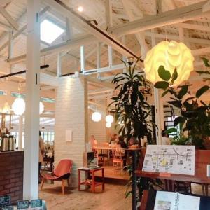 浜松の北欧⑥ ドロフィーズカフェ その4