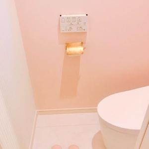 水回り掃除について考えよう:トイレの手入れの現在