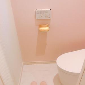 家の手入れについて:トイレ①バブーシュ