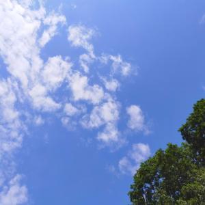 拝啓 盛夏の候