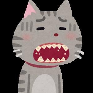 【親知らず】に悩まされています。治療してもいつかは入れ歯...中年の歯の治療について
