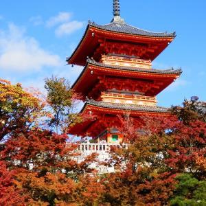 京都の神社・仏閣の紅葉②