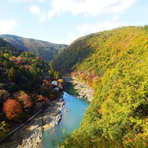 京都の神社・仏閣の紅葉④