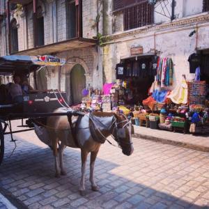 スペイン統治時代の街並み残るビガン(フィリピン)
