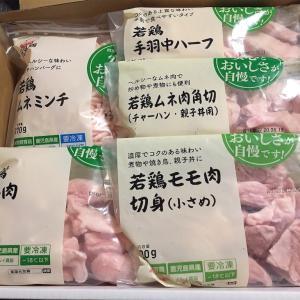 【ふるさと納税】鹿児島県出水市の南国元気鶏。抗生物質不使用で安心・安全