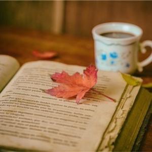 読みかけの秋