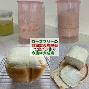 ローズマリーの自家製天然酵母を使った食パンに挑戦!今度は大成功