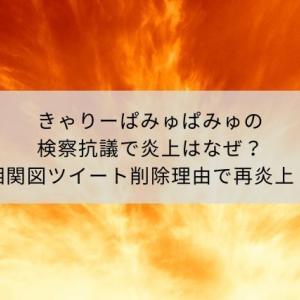 きゃりーぱみゅぱみゅの検察抗議で炎上はなぜ?相関図ツイート削除理由で再炎上!