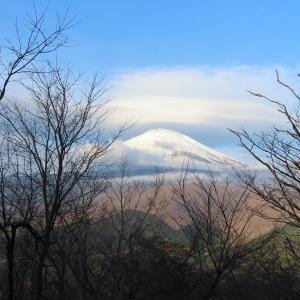 11ヶ月ぶりのトレイルランは籠坂峠から遠回りして山中湖へ。