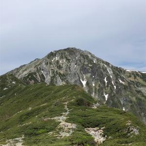 キタダケソウ見に北岳登山