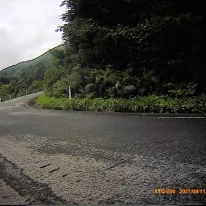 超級山岳西吾妻スカイバレー(白布峠)