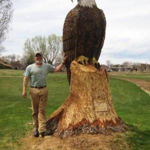 やたらリアルでデカい白頭鷲の彫刻!