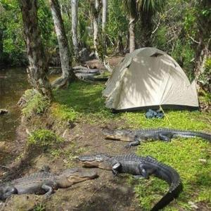 ここをー、今日のー、キャンプ地とー、するっ!