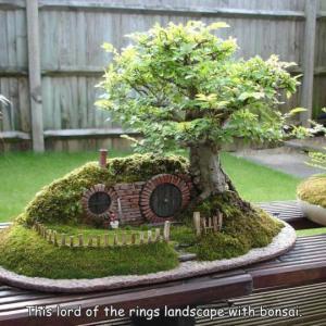 ロードオブザリングのホビットの家がある盆栽
