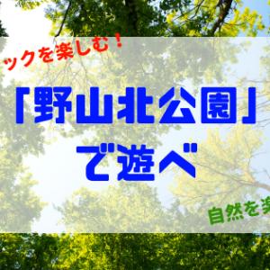 【子ども・育児】野山北公園が最高だったので紹介!「あそびの森」と「冒険の森」でアスレチックを楽しむ!【武蔵村山市】